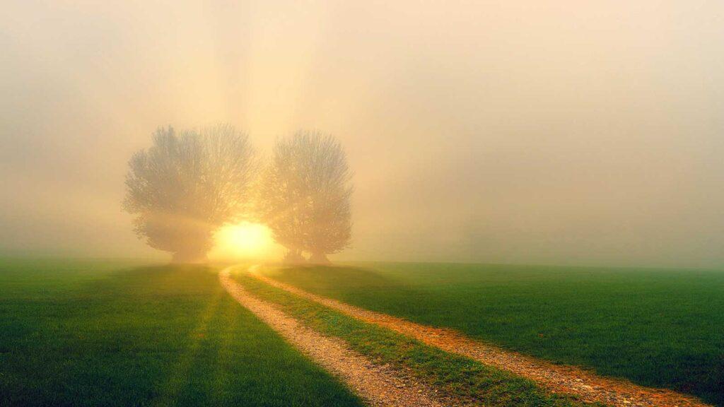 beato luigi monza campo grano sole